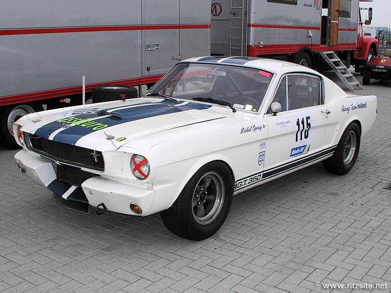 Ford Shelby Mustang 1965 - 1970: the pony with a bite
